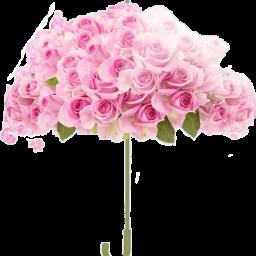 😍❤👍 freetoedit scumbrella umbrella