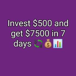forex wealthy binaeytrading cash news