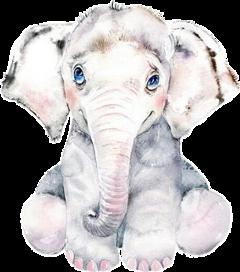 freetoedit watercolor elephant baby babyanimals
