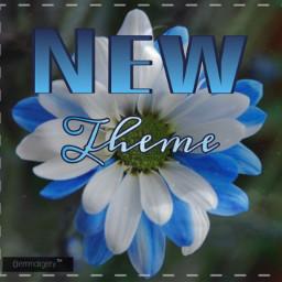 newtheme flower announcement read follow blue freetoedit