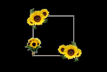 sunflower frame freetoedit