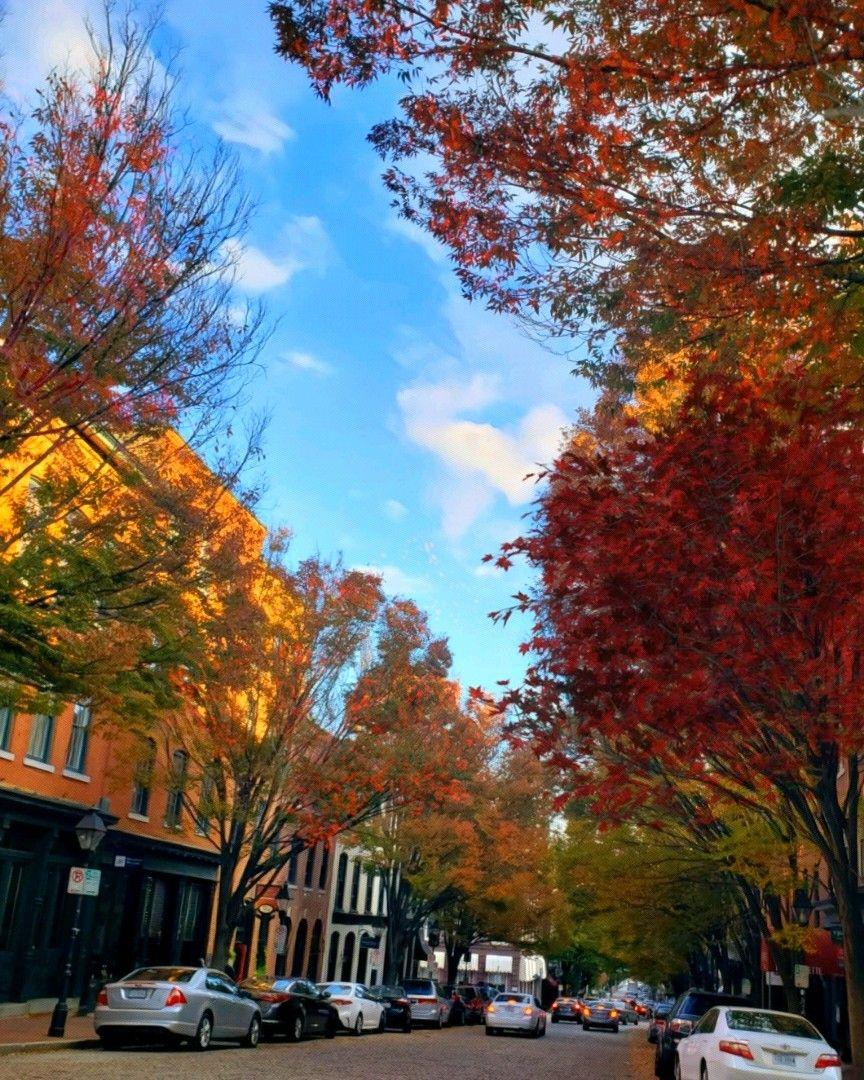 #streetphotography #autumn #RichmondVa #downtown  #freetoedit
