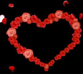love heart rose petal romantic freetoedit