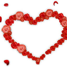 love heart rose petal romantic freetoedit