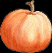 pumpkin pumpkins autumn fall thanksgiving freetoedit