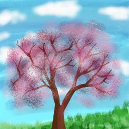 cerezo desafio dibujo dcalonelytree alonelytree