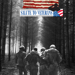freetoedit veteransday honor respect gratitude