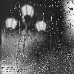 ecrainyseason rainyseason 비 비오는날 가로등 freetoedit