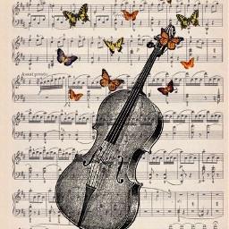 music cello sheet sheetmusic drawing freetoedit