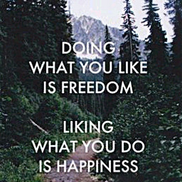 happiness freedom happinessinsmallthings