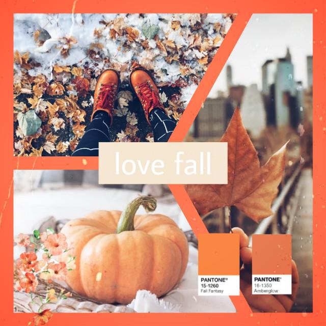🧡🍁🥰🍁🧡🥰   #freetoedit#fall#collage#retro#vintage