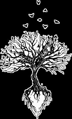 tree heart love birds freedom freetoedit scblacknwhite blacknwhite