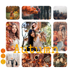 freetoedit autumn autumncolors autumncollage ccautumnmoodboard