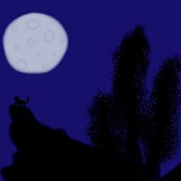 midnight darkness animaleye dark wolf dcnightforest