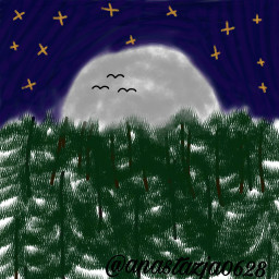 poland🇵🇱 konkursgold nocnylas rysunek dcnightforest