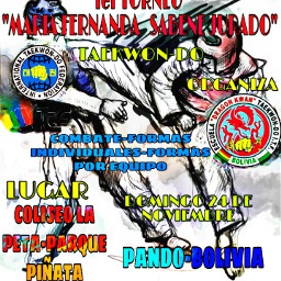 torneo bolivia cool sunday colorfull