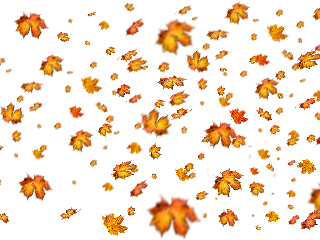sticker leaf autumn autumnleaf aesthetic freetoedit. freetoedit