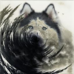 freetoedit wolf moon woods lostinthewoods ircfoggydays