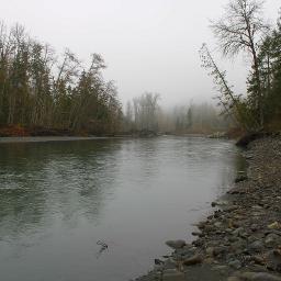 river foggyday freetoedit
