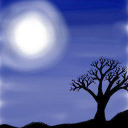bosque dibujo noche night draw freetoedit