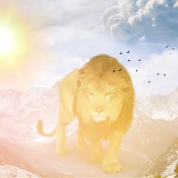 freetoedit vipaziz lion mountains sun