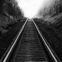 freetoedit photography blackandwhite oldrailwaystation foggyday
