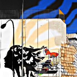 freetoedit murales streetart graffitiart urbanart