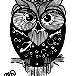 outline owl cute madewithpicssrt dcoutlineart