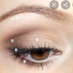 eyemakeup eyeshadow makeup beautiful natural freetoedit