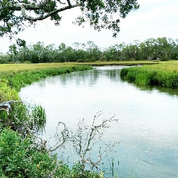 freetoedit river riveradventure adventure outdoors