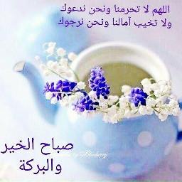 صباح_الخير صباح_الورد صباح