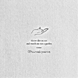 poems poetry quotes tumblrquotes lovequotes freetoedit