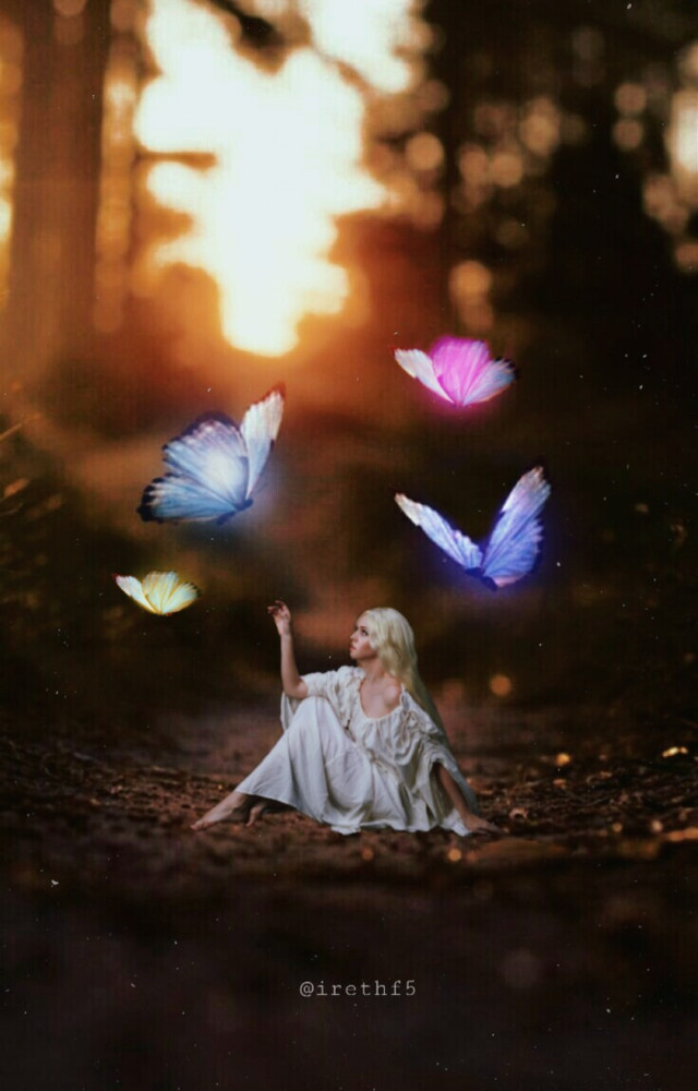 #freetoedit #buterfly #magic #fantasy #hadas @irethf5