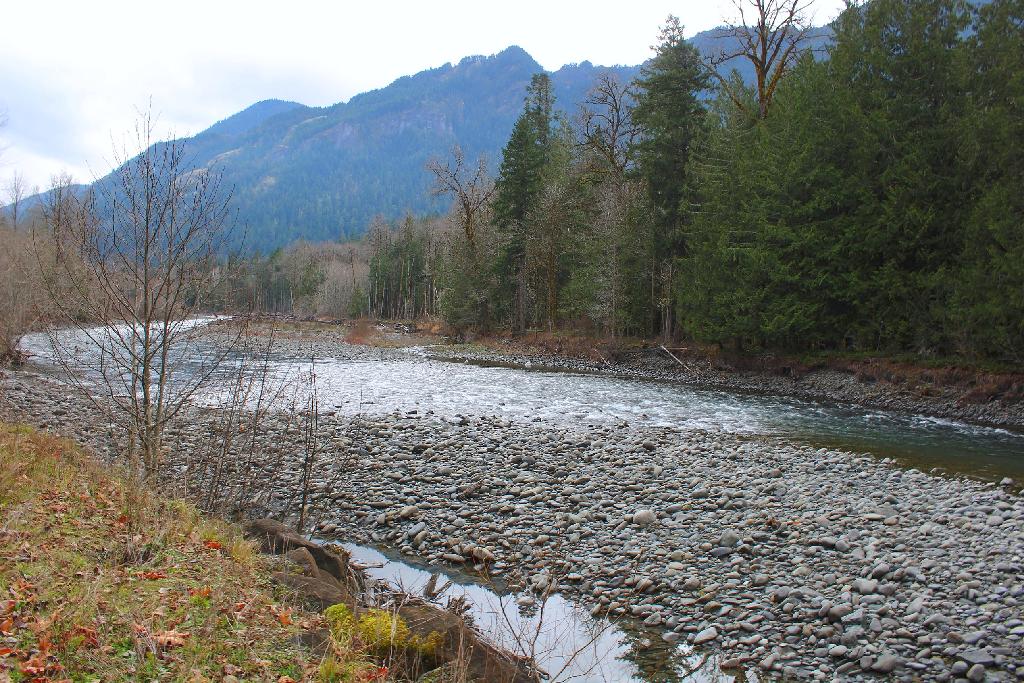#mypic #river #nature #freetoedit
