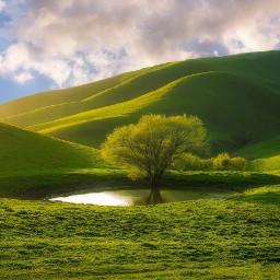 freetoedit green grass tree trees
