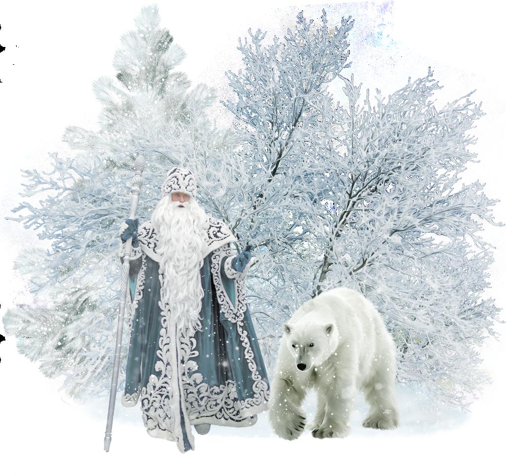 #белый медведь #дедмороз