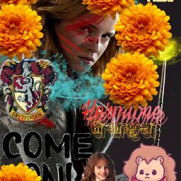 hermionegranger gryffindorpride fighter warrior gryffindor