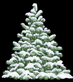 tree winter snow frost freetoedit