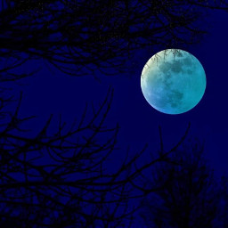 freetoedit moon nature planet trees