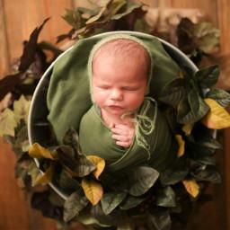 newborn newbornposing love baby workshop