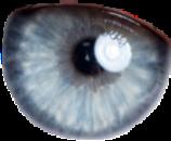 eyes eye gray blue greyeyes freetoedit