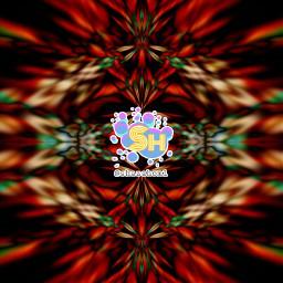 shazahom1 mirrorart myart illusion artistic