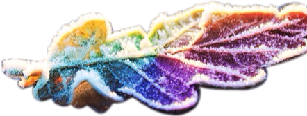 frozen leaf multicolor colorful freetoedit scfrozenleaf frozenleaf