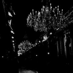 chandelier blank aesthetic pug freetoedit