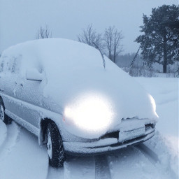 snowday snowfall winterwonderland pcwhite white