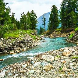 freetoedit myedit nature naturelover outdoors