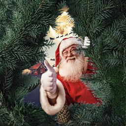 freetoedit santa christmas christmastree winter
