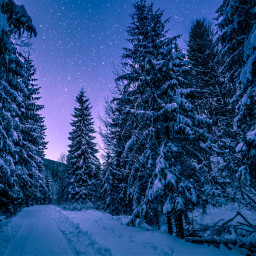 snow christmas background backgrounds freetoedit