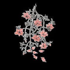 flowers stickers stickerflower freetoedit