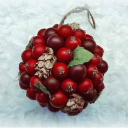 freetoedit white red cranberries ornament